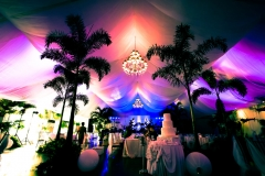 Forest-Wedding-Set-up-4